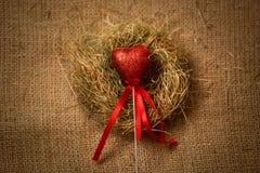 Coeur rouge décoratif sur le bâton avec le ruban dans le nid Photos libres de droits