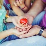 Coeur rouge dans des mains de famille sur le fond lumineux Photos stock