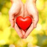 Coeur rouge dans des mains humaines Images libres de droits
