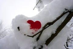 Coeur rouge dans la neige Concept d'amour images stock