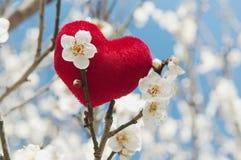 Coeur rouge de peluche Photos libres de droits