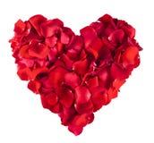 Coeur rouge de Rose images libres de droits