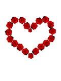 Coeur rouge de roses Image stock