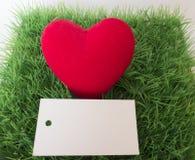 Coeur rouge en herbe verte et carte postale pour votre texte Image stock