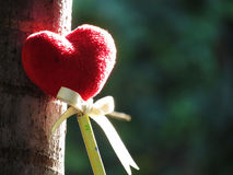 Coeur rouge fait d'une serviette, bâton avec le crayon, ruban de lien, se penchant contre un arbre Photographie stock libre de droits