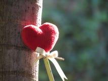 Coeur rouge fait d'une serviette, bâton avec le crayon, ruban de lien, se penchant contre un arbre Image stock