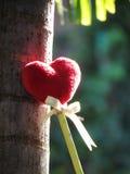 Coeur rouge fait d'une serviette, bâton avec le crayon, ruban de lien, se penchant contre un arbre Photographie stock