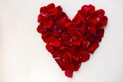 Coeur rouge fait de pétales roses Photo libre de droits