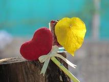 Coeur rouge fait de serviette, bâton avec le crayon, ruban de lien et feuilles jaunes en forme de coeur dans un verre avec les gr Image stock