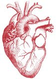 Coeur rouge, illustration Photo stock