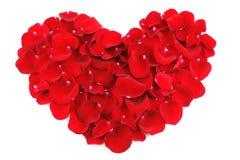 Coeur rouge par des pétales de rose Image libre de droits