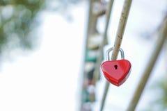 Coeur rouge principal, le concept de l'amour et Valentine& x27 ; jour de s Photographie stock libre de droits