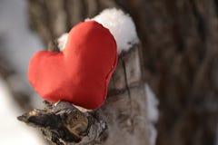 Coeur rouge sur l'arbre Photos libres de droits