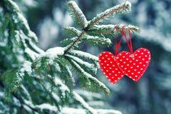 Coeur rouge sur l'arbre d'hiver Image stock