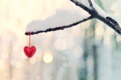 Coeur rouge sur la branche d'arbre neigeuse en hiver Concept heureux d'amour de coeur de célébration de jour de valentines de vac Images libres de droits