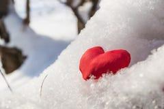 Coeur rouge sur la branche neigeuse Photos libres de droits