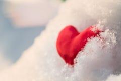 Coeur rouge sur la branche neigeuse Image libre de droits