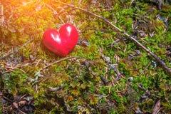 Coeur rouge sur la couverture de mousse la roche jpg Image libre de droits
