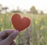 Coeur rouge sur la main de la femme sur le fond de jardin d'agrément Amour et Images stock