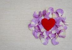Coeur rouge sur la rose de rose avec l'espace sur le fond de texture de toile Photos stock