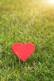Coeur rouge sur les milieux d'herbe verte avec l'espace de copie Photographie stock libre de droits