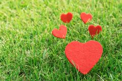 Coeur rouge sur les milieux d'herbe verte avec l'espace de copie Photos stock