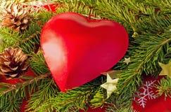Coeur rouge sur un branchement de sapin Images libres de droits
