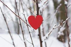 Coeur rouge sur un fond des arbres couverts de neige Images libres de droits