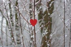 Coeur rouge sur un fond des arbres couverts de neige Photos stock