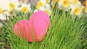 Coeur s'élevant dans l'herbe verte banque de vidéos