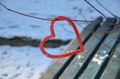 Coeur sur l'arbre d'hiver en parc Image stock