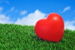 Coeur sur l'herbe Photos libres de droits