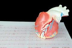 Coeur sur un électrocardiogramme Photo libre de droits