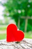 Coeur sur une roche dans le jardin Photographie stock libre de droits