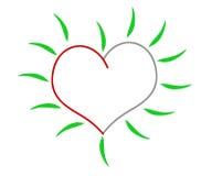 Coeur vert Photo libre de droits