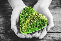 Coeur vert dans des mains - concept vert d'amour Photographie stock libre de droits