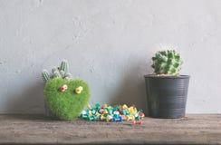 coeur vert, fleur de cactus de livre sur la table en bois, amour et valentin Photographie stock libre de droits