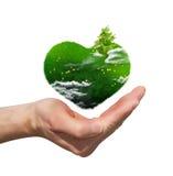 Coeur vert sur la paume illustration de vecteur