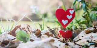Coeurs cachés en nature, fond de rivière photographie stock