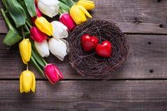 Coeurs décoratifs en nid et fleurs lumineuses de tulipes de ressort dessus Photographie stock