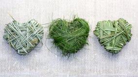 Coeurs d'herbe photographie stock libre de droits