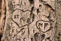 Coeurs dans un arbre mort Image stock