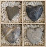Coeurs dans un cadre Photos libres de droits