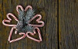 Coeurs de canne de sucrerie avec le pin Photographie stock