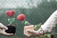 Coeurs de fleur de décorations de valentines Photo libre de droits