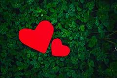 Coeurs de papier rouges dans le trèfle vert Image stock