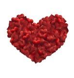Coeurs de tissu à un grand coeur Images libres de droits