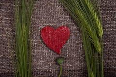 Coeurs et épis de blé abstraits Photos stock
