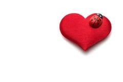 Coeurs et coccinelle pour le jour de valentines Photos libres de droits