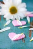 Coeurs et pétales de fleur Photographie stock